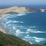 ☆【ニュージーランド2008】レインガ岬バスツアー Cape Reinga 1 Day Tour:Dune Rider Unique TOURS(166枚)