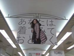 黒木メイサ:ユニクロ吊り広告★2011年11月20日のつぶやき★