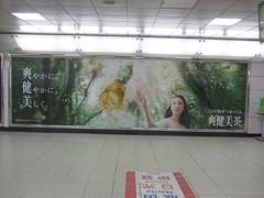 武井咲:爽健美茶★2012年02月08日のつぶやき★