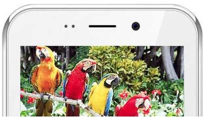 2月18日のトピック…インドで420円スマホ発売、パナソニック社内同性婚容認、ツイッター新機能GIFアニメ画像ボタン