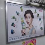 北川景子:生茶緑の野菜のブレンド茶★2012年03月29日のつぶやき★