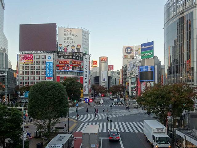 z2014_1114_0629_DSC08461渋谷109