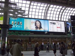Seesaaブログ 吉高由里子 Canon IXY31S★2011年06月11日のつぶやき★