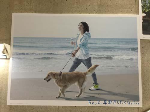 gooブログ 6月22日(水)のつぶやき:松岡茉優 アクエリアスウォーター(JR新宿駅)