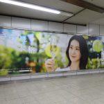 gooブログ 11月17日(木)のつぶやき:大島優子 さらりと、本格。CHOYA(JR渋谷駅ビルボード)