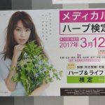 gooブログ 11月19日(土)のつぶやき:蛯原友里 メディカルハーブ検定(駅ばり広告)