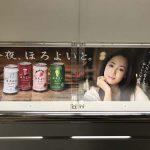 gooブログ 12月20日(火)のつぶやき:沢尻エリカ 今夜、ほろよいと。(電車マド上広告)
