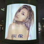 gooブログ 1月12日(木)のつぶやき:ローラ ビジンな私は、努力してる。(新宿駅西口電飾広告)