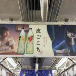 gooブログ 3月8日(水)のつぶやき:小嶋陽菜 皮ごこち KIRIN(電車中吊広告)