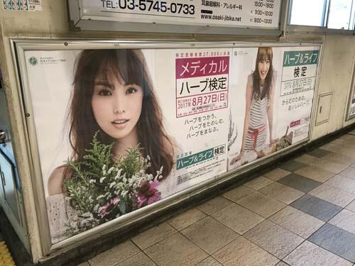 gooブログ 5月8日(月)のつぶやき:蛯原友里 メディカルハーブ検定(品川駅ばり広告)