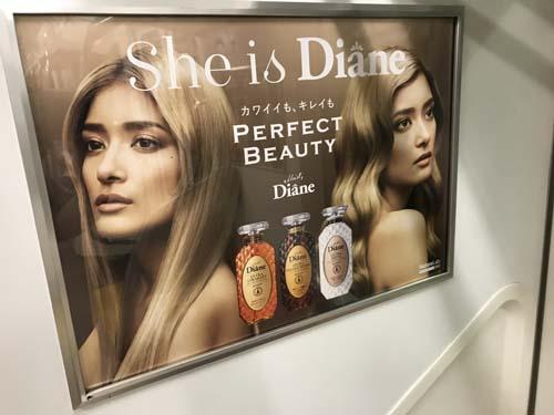 gooブログ 9月12日(火)のつぶやき:ローラ She is Diane カワイイも、キレイも PERFECT BEAUTY(電車ドア横広告)