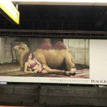 gooブログ 9月2日(土)のつぶやき:ラクダけど盛れるバルコネットノンワイヤー PEACH JHON(渋谷駅ホームビルボード広告)